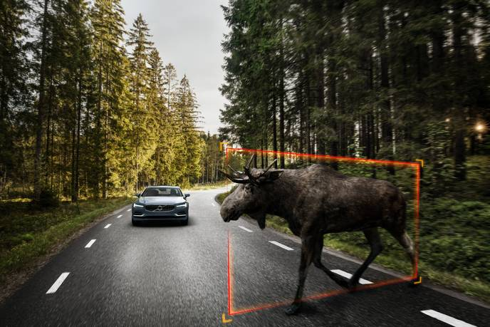 170159_Exterior_Large_Animal_Detection_Volvo_S90_1
